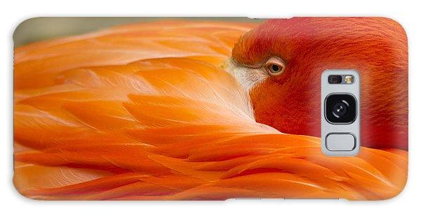 Bashful Flamingo Galaxy Case