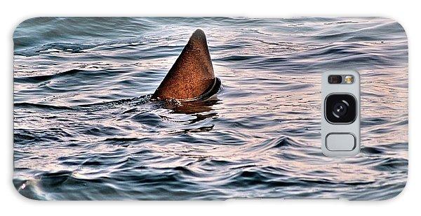 Basking Shark In July Galaxy Case