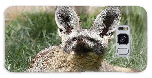 Bat-eared Fox Galaxy Case