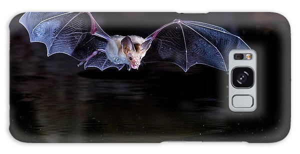 Bat Flying Over Pond Galaxy Case