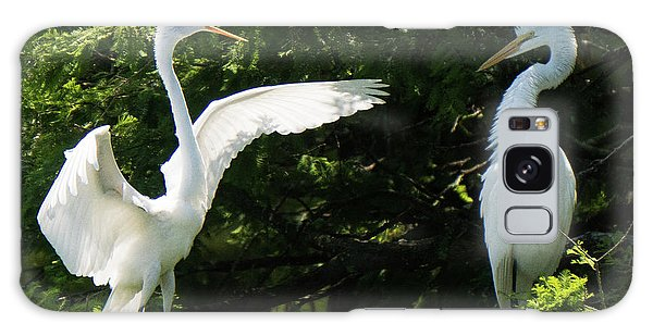 Battle Of The Egrets Galaxy Case