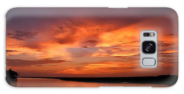 Bayou Sunset Galaxy Case by Brian Wright