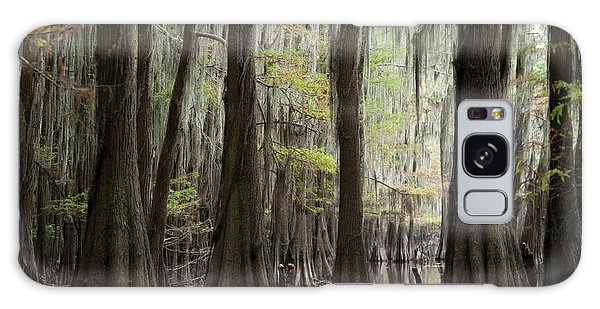 Bayou Trees Galaxy Case