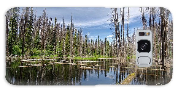 Bc Forest Lake Galaxy Case