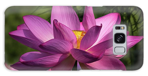 Galaxy Case featuring the photograph Be Like The Lotus by Cindy Lark Hartman