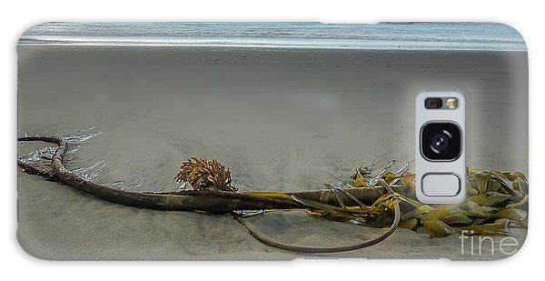 Beach Bull Kelp Laying Solo Galaxy Case