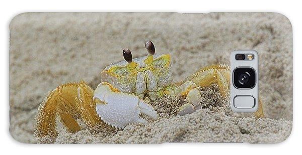 Beach Crab In Sand Galaxy Case by Randy Steele