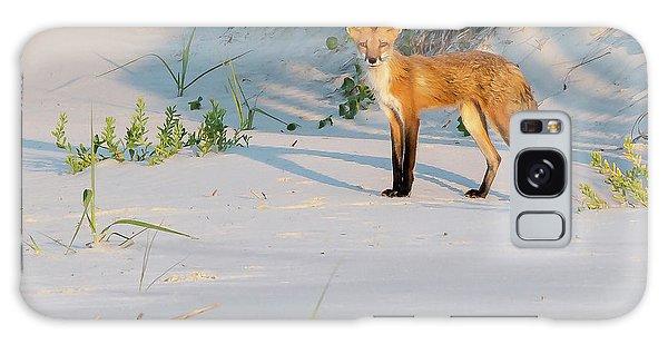 Beach Fox #3 Galaxy Case