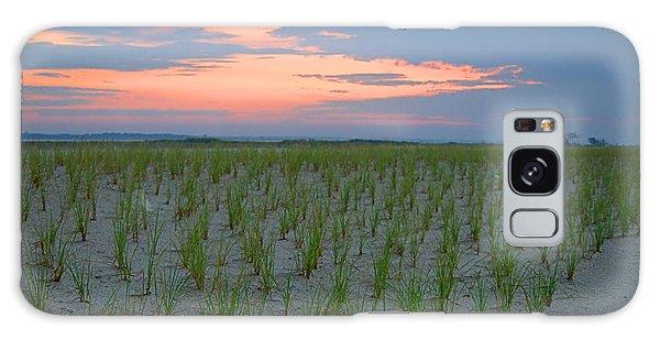 Beach Grass Farm Galaxy Case