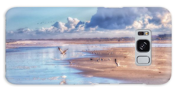 Beach Gulls Galaxy Case