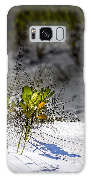 Mangrove Galaxy Case - Beach Life by Marvin Spates