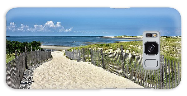 Beach Path At Cape Henlopen State Park - The Point - Delaware Galaxy Case by Brendan Reals