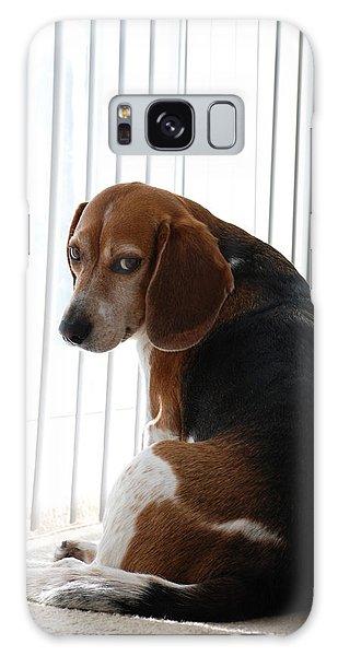 Beagle Attitude Galaxy Case