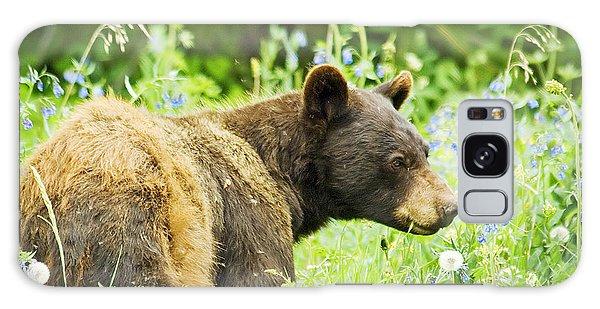 Bear In Flowers Galaxy Case