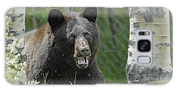 Bear In Yard Galaxy Case