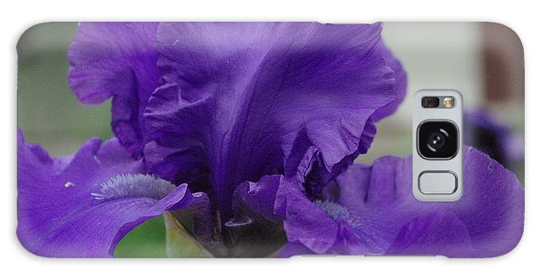 Bearded Blue Iris Galaxy Case