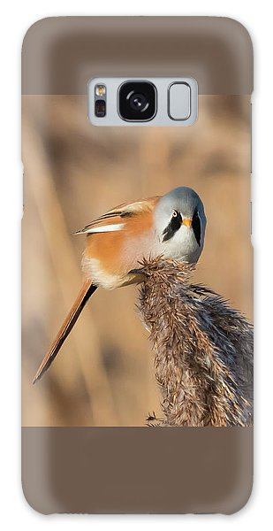 Bearded Reedling Galaxy Case