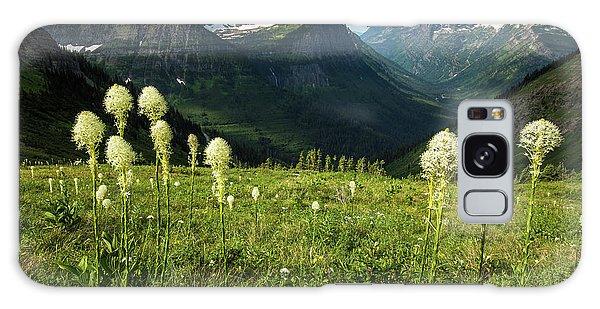 Beargrass - Glacier Np Galaxy Case