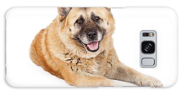 Beautiful Akita Dog Laying Galaxy Case