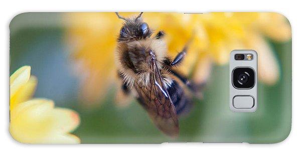 Beautiful Bee Galaxy Case