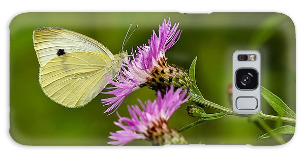 Beautiful Butterfly On Pink Thistle Galaxy Case