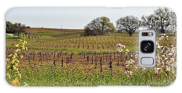 Beautiful California Vineyard Framed With Flowers Galaxy Case
