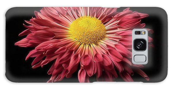 Beautiful Chrysanthemum Galaxy Case