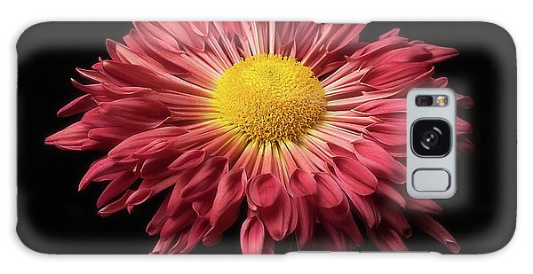 Beautiful Chrysanthemum Galaxy Case