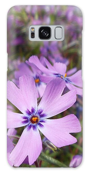 Beautiful Creeping Purple Phlox Galaxy Case