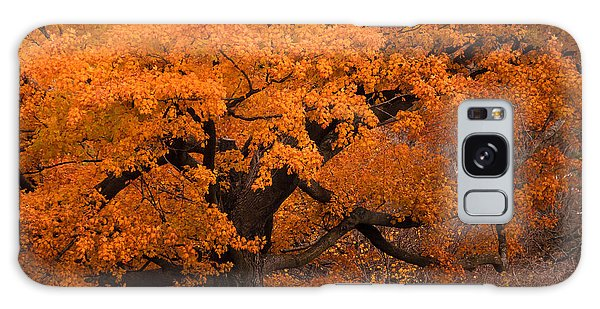 Beautiful Orange Tree On A Fall Day Galaxy Case by Joni Eskridge