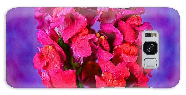 Beautiful Snapdragon Flowers Galaxy Case by Ray Shrewsberry