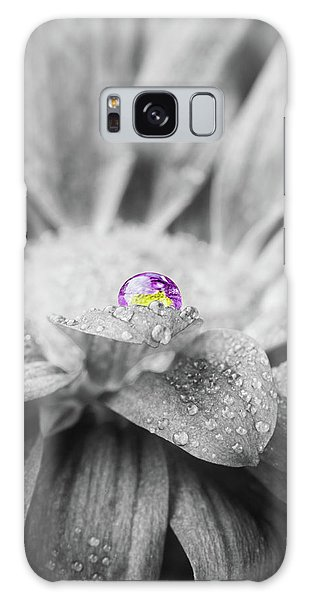 Beautiful Splash Of Purple On A Daisy In The Garden Galaxy Case
