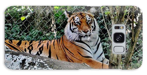 Beautiful Tiger Galaxy Case