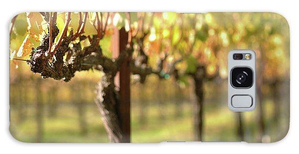 Beautiful Vineyard In Napa Valley Galaxy Case