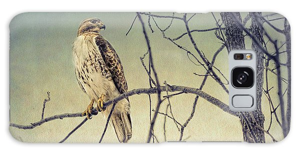 Red-tailed Hawk On Watch Galaxy Case