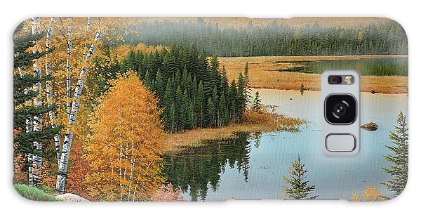 Beaver Pond Lookout Galaxy Case