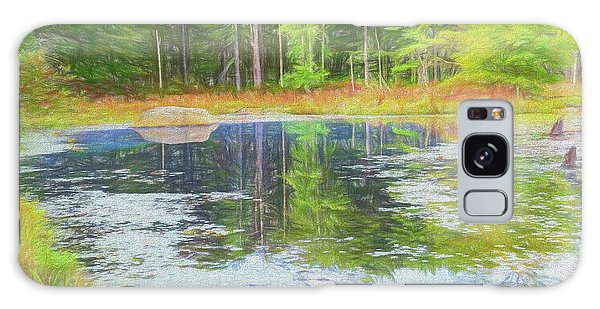 Beaver Pond Reflections Galaxy Case