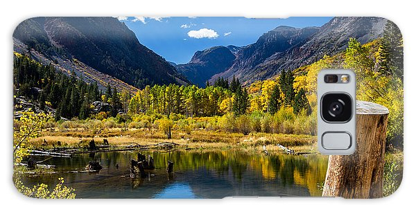 Beaver Pond Galaxy Case