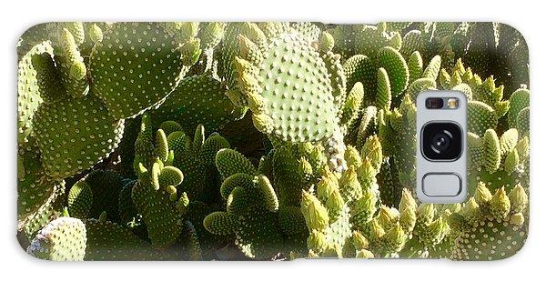 Beaver Tail Cactus, Cave Creek, Arizona Galaxy Case