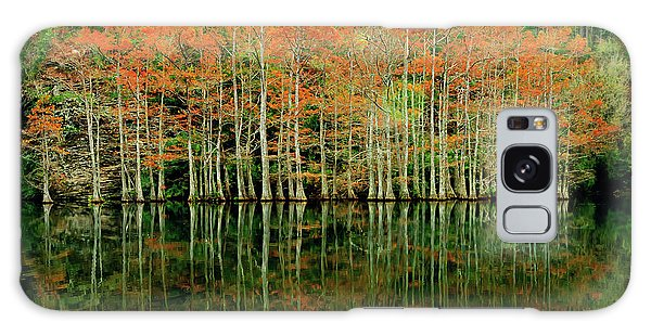 Beaver's Bend Cypress All In A Row Galaxy Case