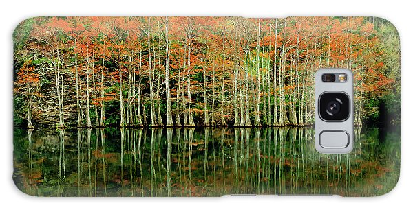 Beaver's Bend Cypress All In A Row Galaxy Case by Tamyra Ayles