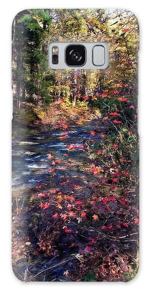 Beavers Bend Galaxy Case by Lana Trussell