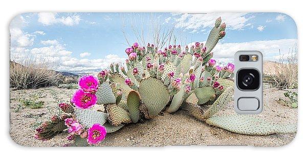 Beavertail Cactus Galaxy Case
