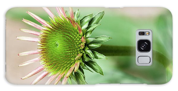 Becoming Echinacea - Galaxy Case