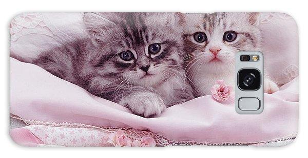 Bedtime Kitties Galaxy Case