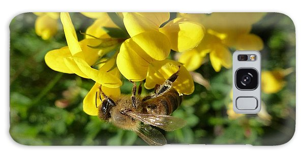 Bee And Broom In Bloom Galaxy Case