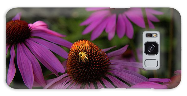 Bee And Coneflower Galaxy Case