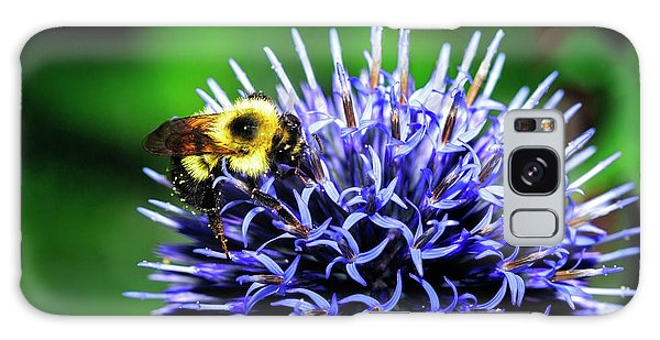 Bee And Thistle Galaxy Case