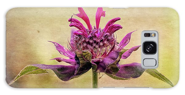 Bee Balm With A Vintage Touch Galaxy Case