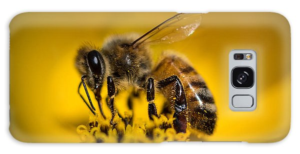 Bee Enjoys Collecting Pollen From Yellow Coreopsis Galaxy Case